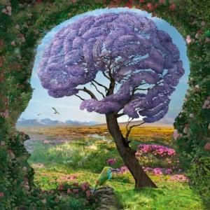 brain-tree